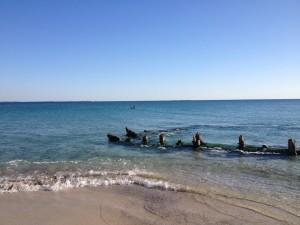 Shipwreck Coogee Beach