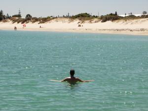 Fremantle Dog beach summer