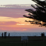 My favourite things about Fremantle